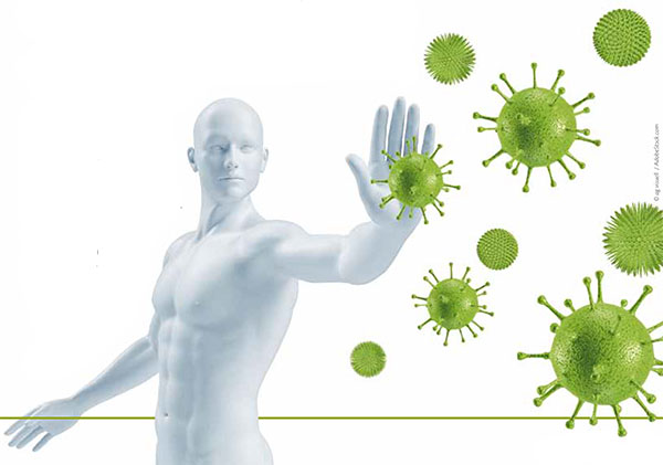 Immunabwehr - Bild: ag visuell | adobestock.com